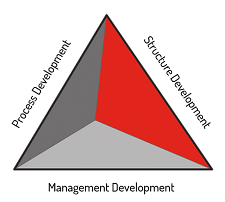 Process Structure and Management Development